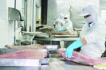 Đơn hàng xuất khẩu thủy sản bật tăng sau khi EVFTA có hiệu lực